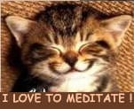 Meditation for Pets: Cookie's Story