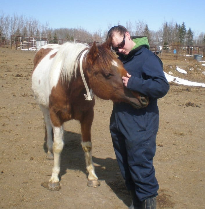 Read more about the article A Sahaj Essay on Horses & People at Horse Rescue Centres – Love & Support in a Journey that Stregthens the Hearts