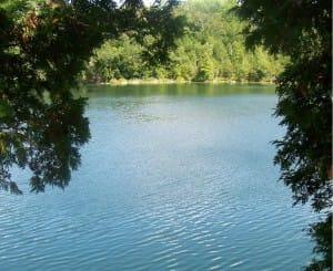 Read more about the article Halton Summer Seminar on Monday, July 26 @ Crawford Lake with Sahaja Yoga Meditation!