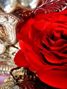 """Invite to Special Event:  """"The Sahaj Valentine: Feel the Heart & Love with the 6th Sense"""" on Feb 16, 7pm -9 pm (FREE & OPEN to ALL)"""