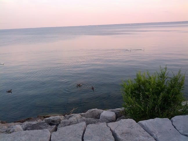 Ontario Lakeshore in Burlington - photo by Ioana - 1 -Summer 2013