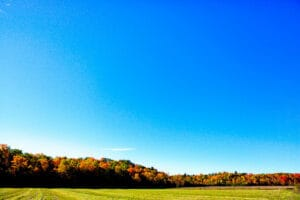The Land of Canajoharie
