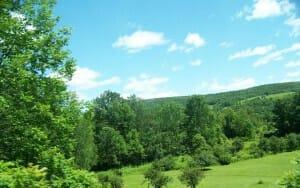 canajoharie-landscape-1