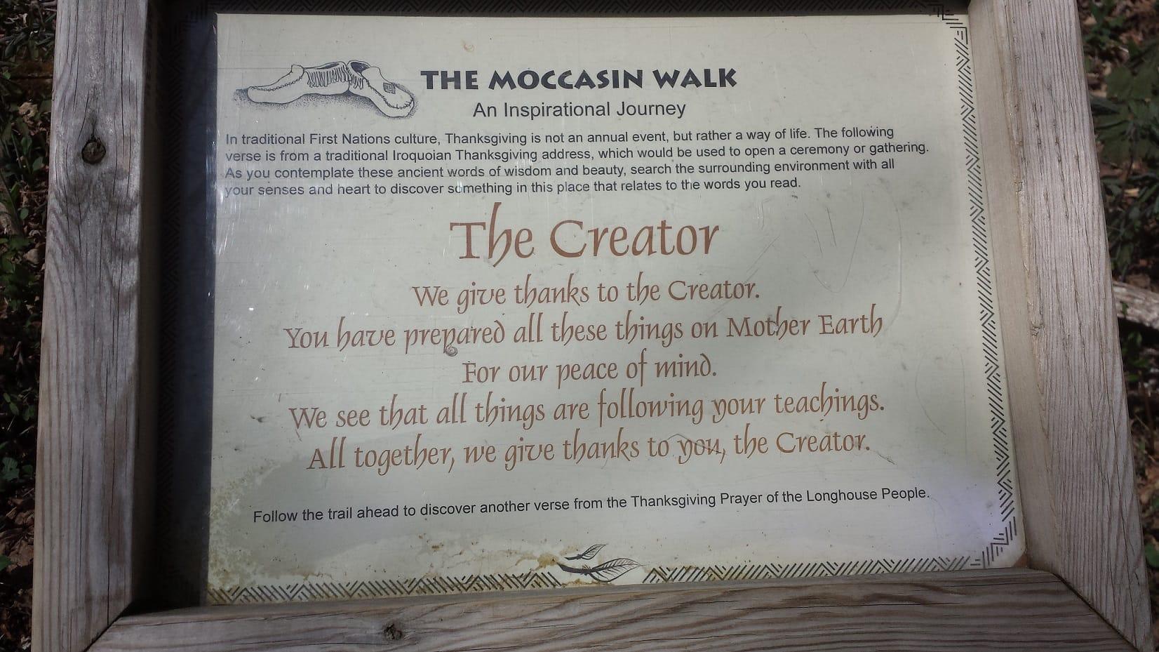 Creator - Aboriginal