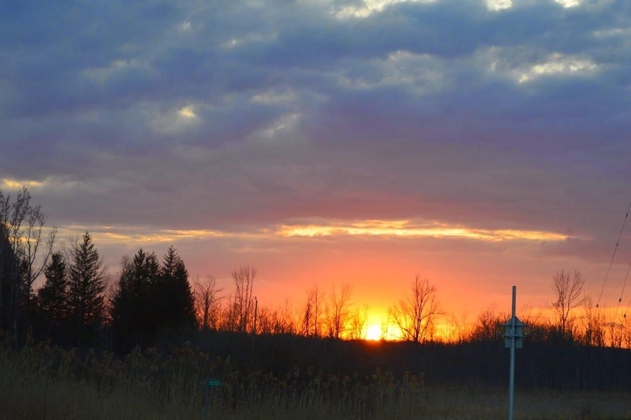 Sleeping Sun in mIlton