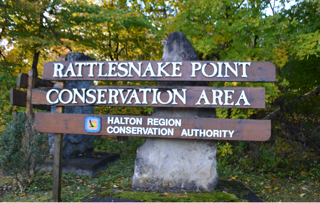 Rattlersnake Point-1