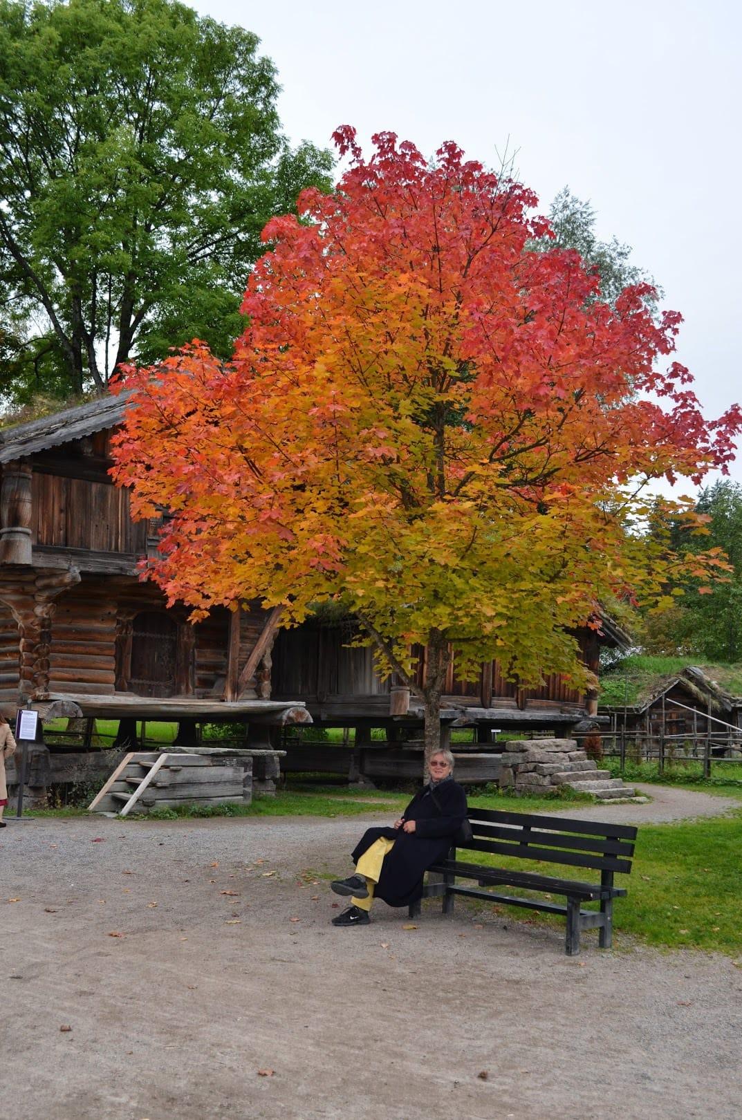 gregoire-autumn